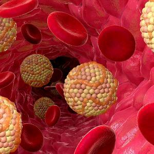Photo of Обговоримо знижений рівень холестерину в крові варто остерігатися?
