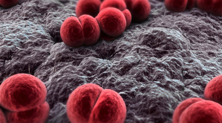 Photo of Гнійний менінгіт: причини, симптоми, лікування
