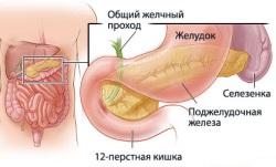 Photo of Народні методи лікування панкреатиту