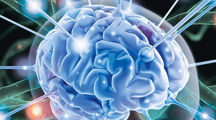 Photo of Як поліпшити мозковий кровообіг