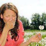 Photo of Що провокує алергію і як з нею боротися
