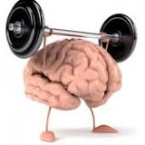 Photo of Продукти які потрібні для роботи мозку