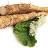 Photo of Чим корисний корінь лопуха для організму