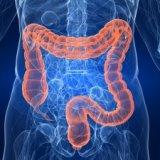 Photo of Проведення віртуальної колоноскопії кишечника