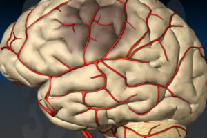 Photo of Чому розвивається ішемія мозку у новонародженого, чи можна врятувати малюка?