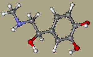 Photo of Адреналін: все про гормоні