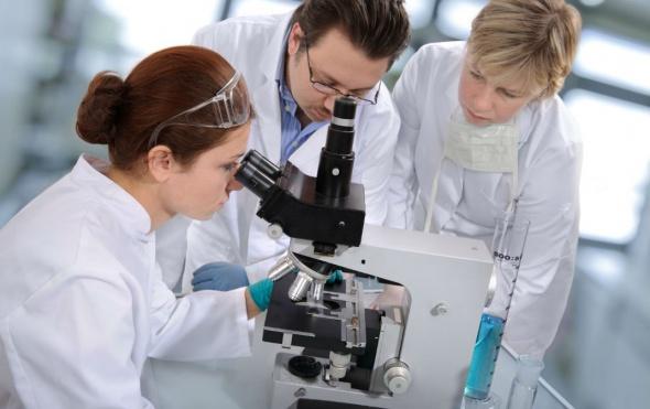 Photo of Вчені розповіли, яка їжа допоможе запобігти раку
