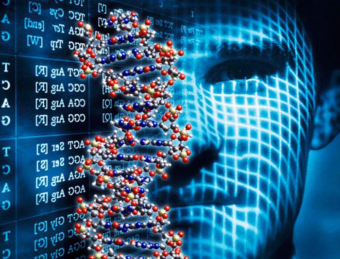 Photo of Астма, екзема, сінна лихоманка: виявлені генетичні чинники ризику