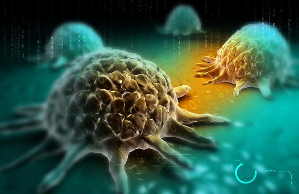 Photo of Відкритий спосіб «відключати» стійкість ракових клітин