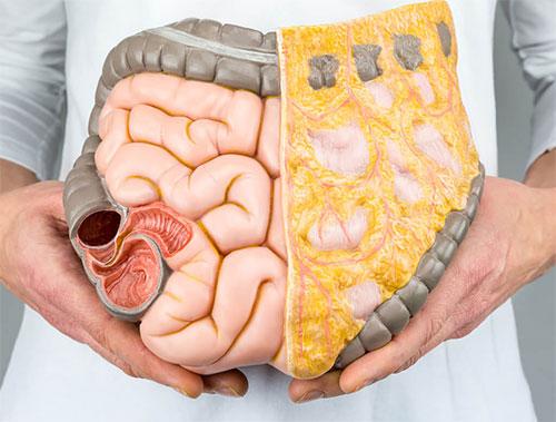 Photo of Чим небезпечний вісцеральний жир?