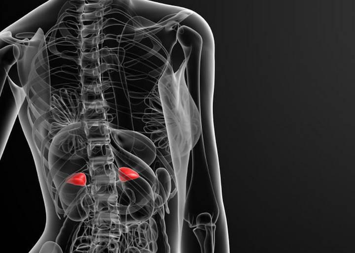 Photo of Кіста наднирника: діагностика та лікування