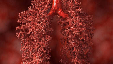 Photo of Вчені довели ефективність простого способу уникнути раку