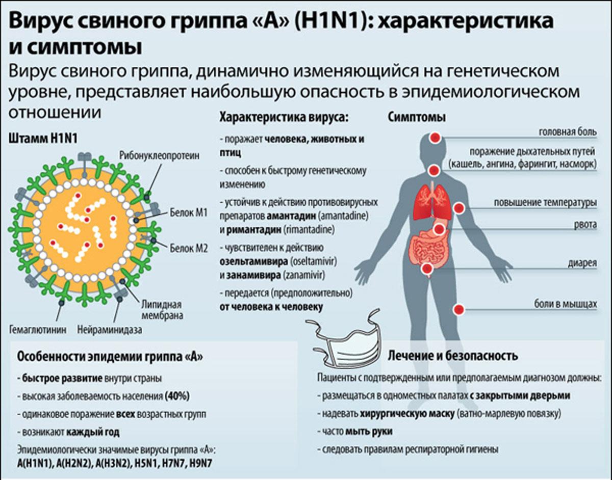свиной грипп как лечить