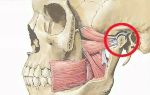 Дисфункция височно нижнечелюстного сустава мануальная терапия