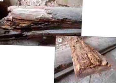 разрушенные домовым грибом балки